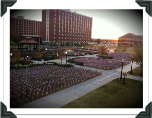 Flags at Cameron University for Veterans Day 2011