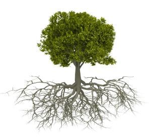 tree'
