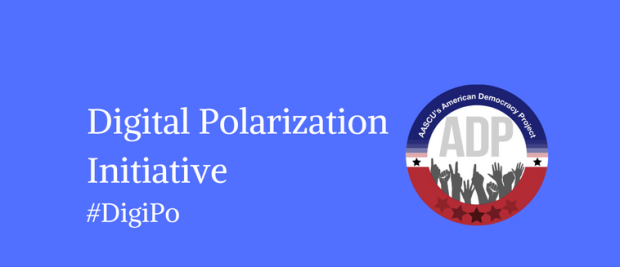 The Digital Polarization Initiative